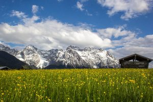 Frühling in der Alpenwelt Karwendel